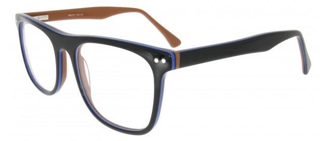 Arbeitsplatzbrille Hajo C13