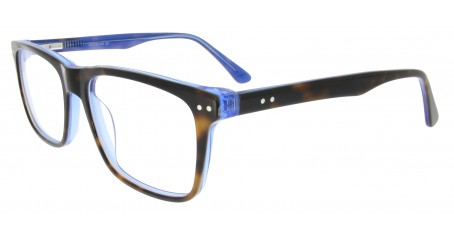 Brille Rivea C893